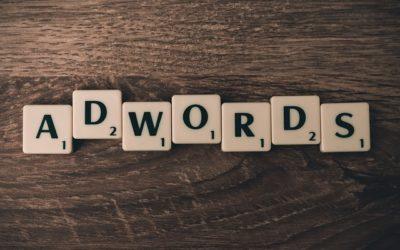 Znawca  w dziedzinie kampani Adwords odciąży i dopasuje godziwą strategie do twojego interesu.